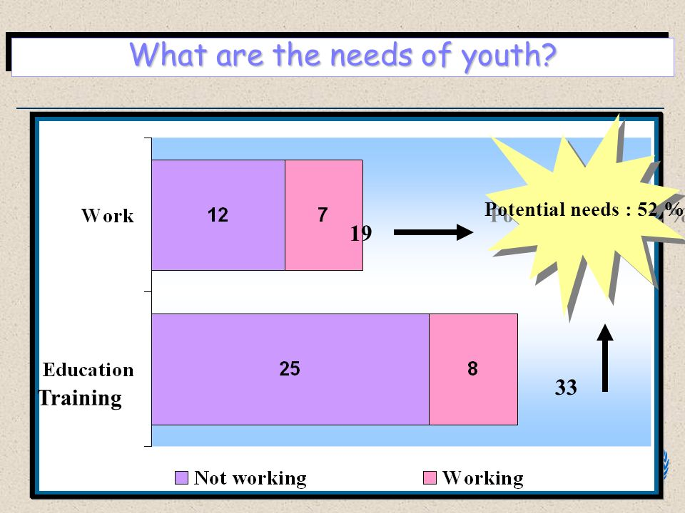 What are the needs of youth? 19 33 Potential needs : 52 % Training