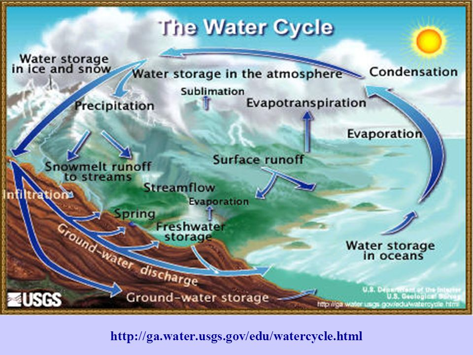 http://ga.water.usgs.gov/edu/watercycle.html