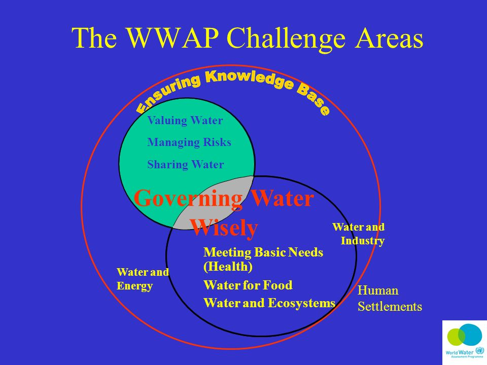 The WWAP Challenge Areas Meeting Basic Needs (Health) Water for Food Water and Ecosystems Water and Industry Water and Energy Valuing Water Managing Risks Sharing Water Governing Water Wisely Human Settlements