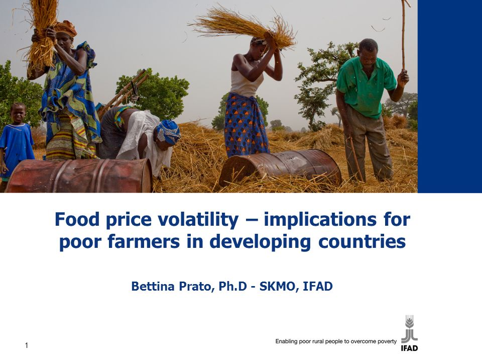 Food price volatility – implications for poor farmers in developing countries Bettina Prato, Ph.D - SKMO, IFAD 1