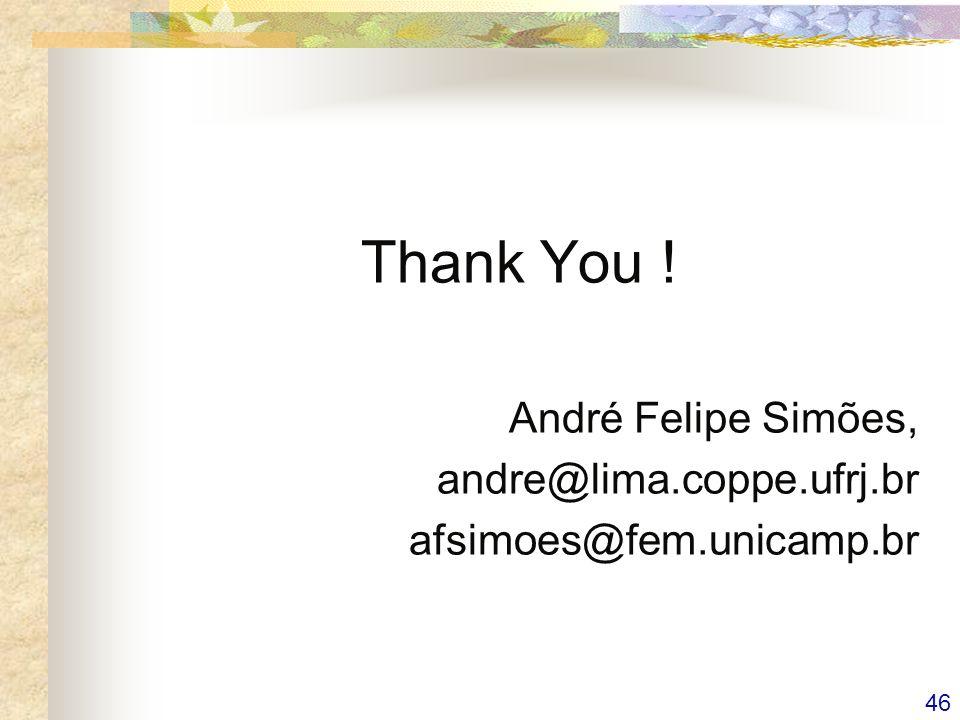 46 Thank You ! André Felipe Simões, andre@lima.coppe.ufrj.br afsimoes@fem.unicamp.br