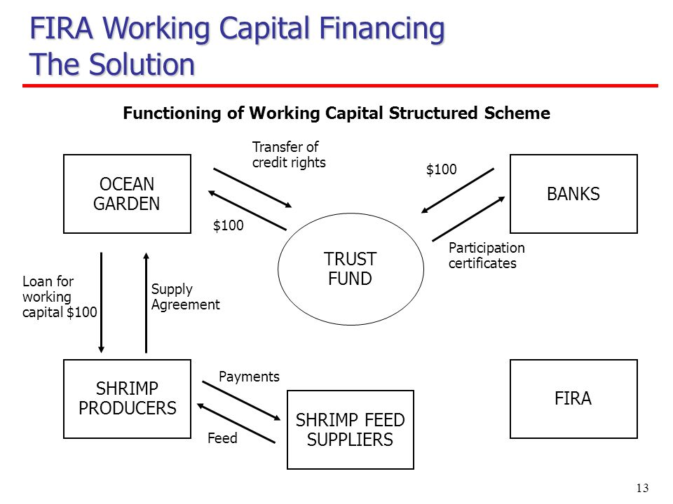 13 OCEAN GARDEN Functioning of Working Capital Structured Scheme $100 SHRIMP PRODUCERS BANKS FIRA Supply Agreement Loan for working capital $100 Trans