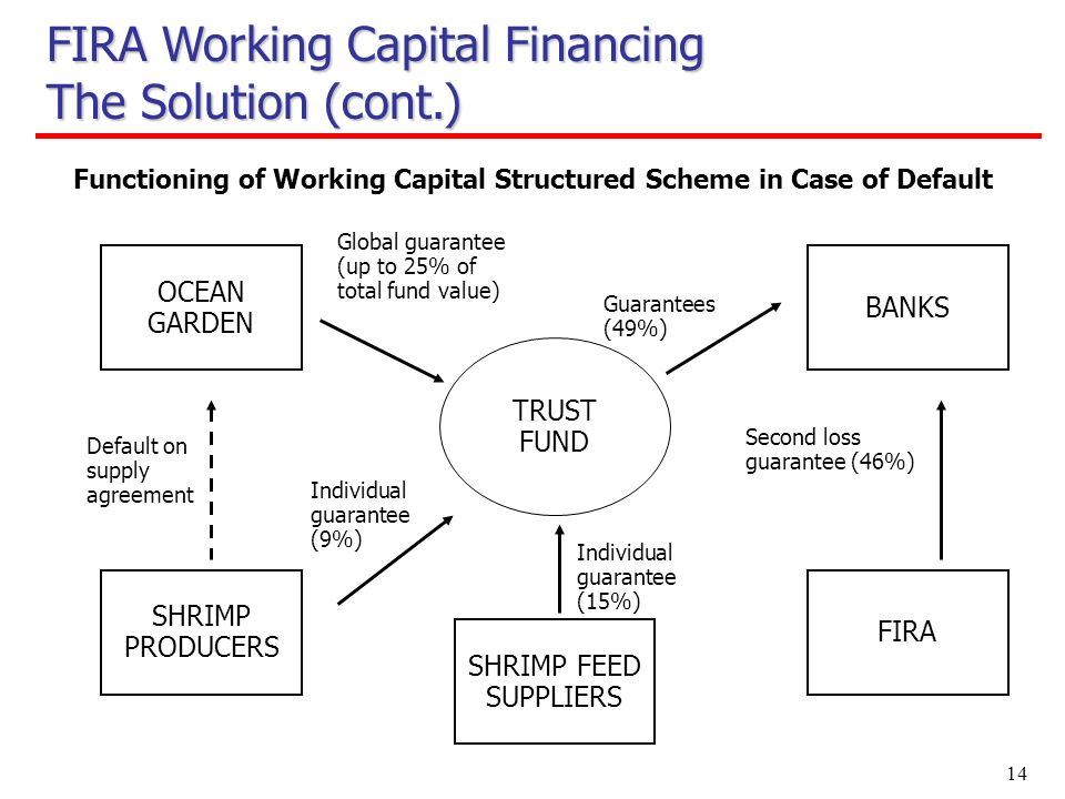 14 OCEAN GARDEN Functioning of Working Capital Structured Scheme in Case of Default Guarantees (49%) SHRIMP PRODUCERS BANKS FIRA Individual guarantee (9%) Default on supply agreement Global guarantee (up to 25% of total fund value) TRUST FUND SHRIMP FEED SUPPLIERS Individual guarantee (15%) Second loss guarantee (46%) FIRA Working Capital Financing The Solution (cont.)