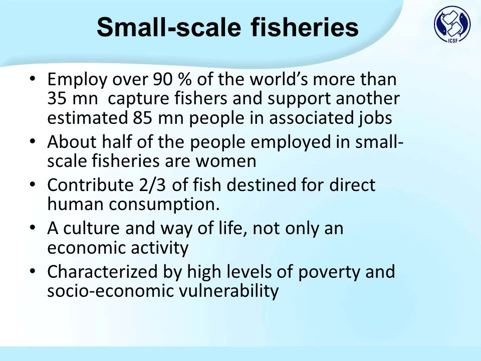Employ over 90 % of the worlds more than 35 mn capture fishers and support another estimated 85 mn people in associated jobs About half of the people employed in small- scale fisheries are women Contribute 2/3 of fish destined for direct human consumption.