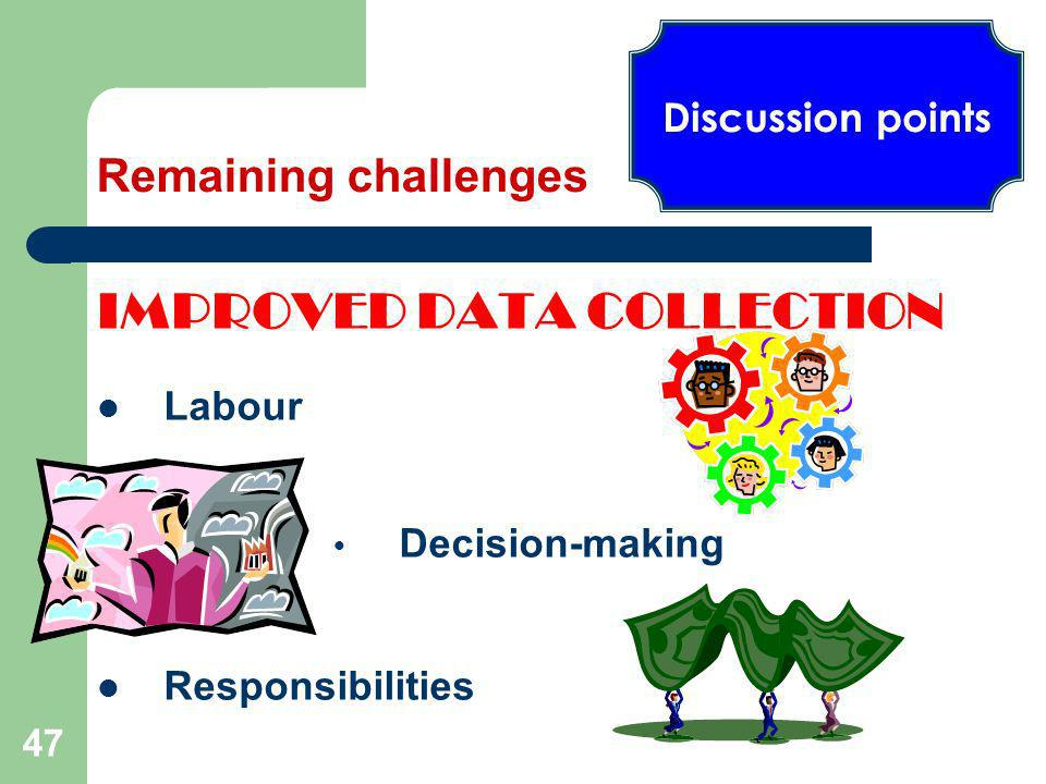 47 IMPROVED DATA COLLECTION Labour Decision-making Responsibilities Discussion points Remaining challenges