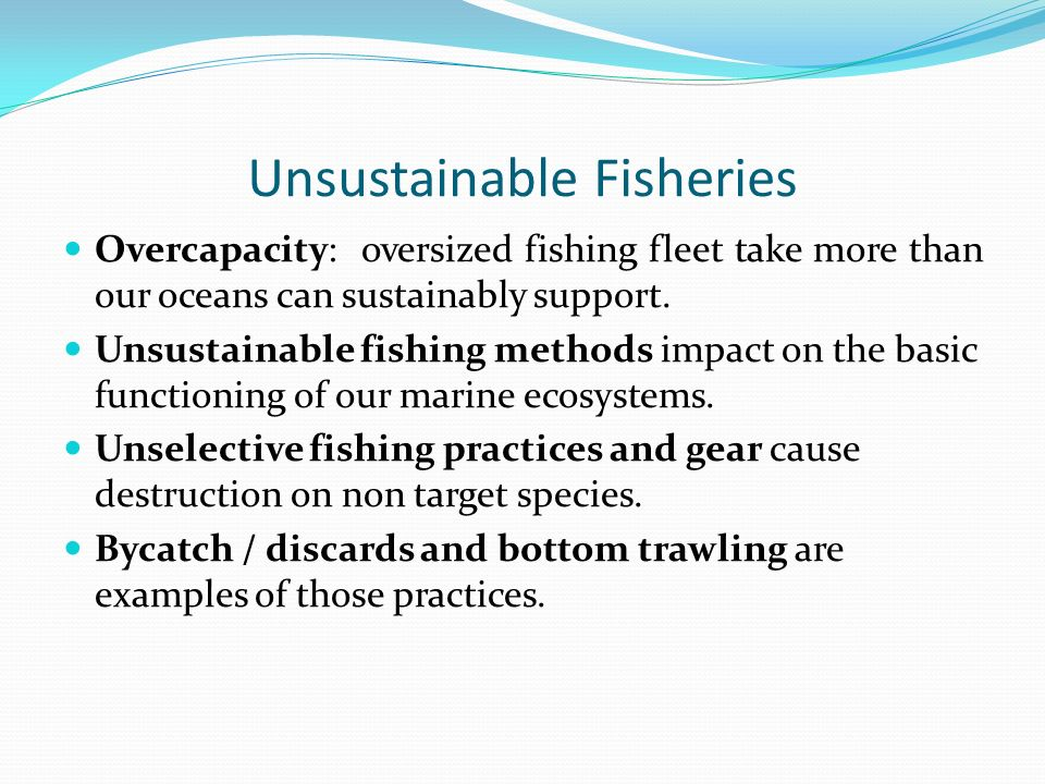 Unsustainable Fisheries Overcapacity: oversized fishing fleet take more than our oceans can sustainably support.