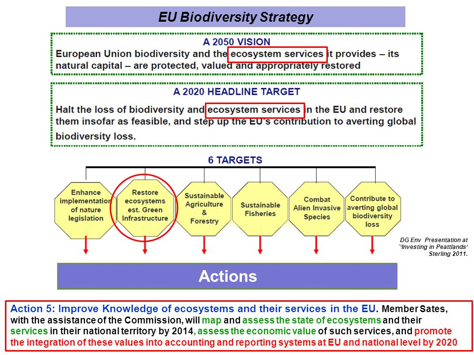 DG Env Presentation at ´Investing in Peattlands Sterling 2011.