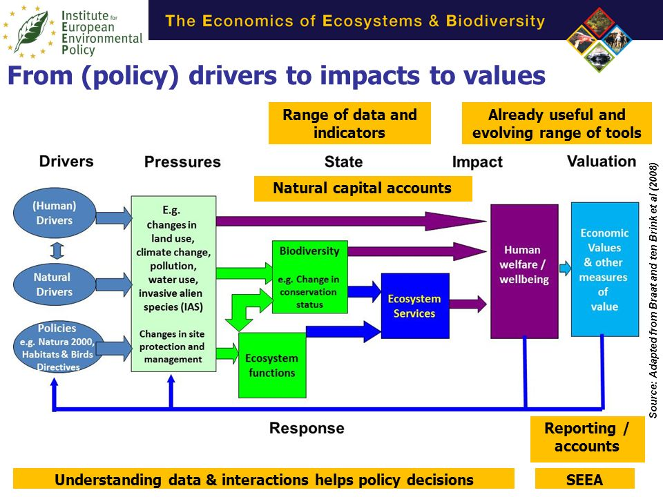 Source: Adapted from Braat and ten Brink et al (2008) Range of data and indicators Already useful and evolving range of tools Understanding data & interactions helps policy decisionsSEEA Reporting / accounts Natural capital accounts From (policy) drivers to impacts to values