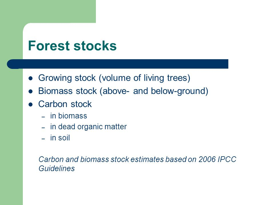 Forest stocks Growing stock (volume of living trees) Biomass stock (above- and below-ground) Carbon stock – in biomass – in dead organic matter – in soil Carbon and biomass stock estimates based on 2006 IPCC Guidelines