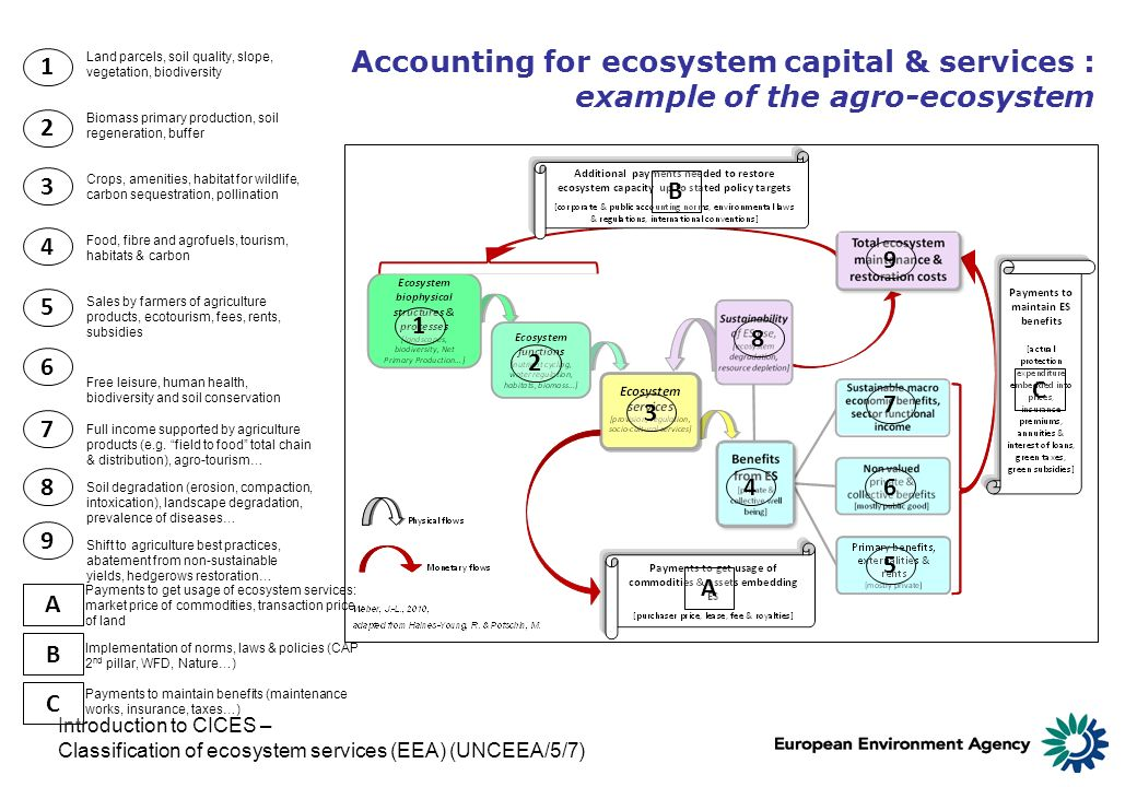 Introduction to CICES – Classification of ecosystem services (EEA) (UNCEEA/5/7) Accounting for ecosystem capital & services : example of the agro-ecos