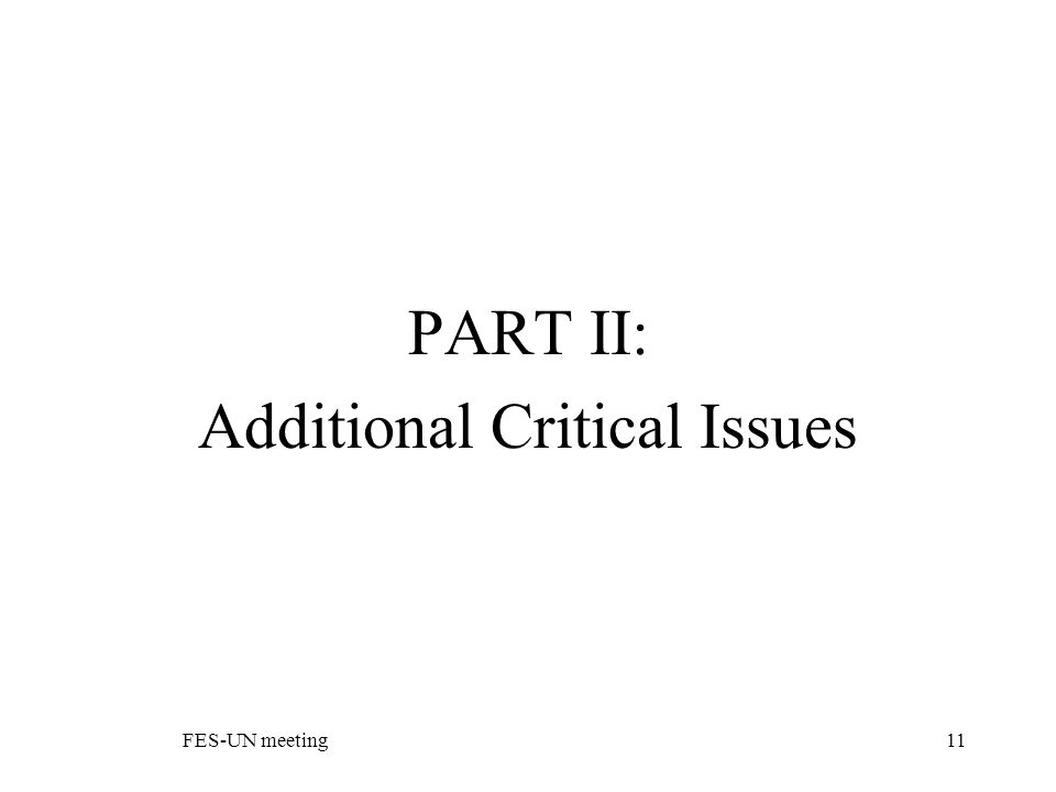 FES-UN meeting11 PART II: Additional Critical Issues
