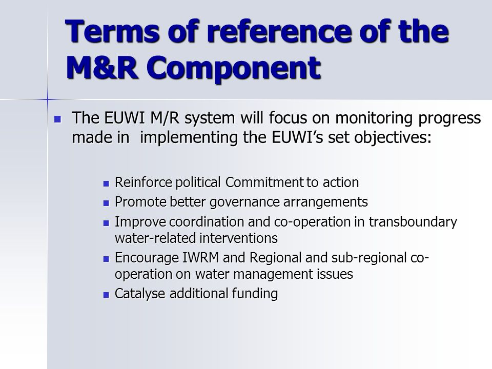 Ongoing activities to complete the Design phase Completing modeling and elaboration of indicators for the other policy levels of the EUWI Completing modeling and elaboration of indicators for the other policy levels of the EUWI Interfacing the EUWI M/R System with existing monitoring activities Interfacing the EUWI M/R System with existing monitoring activities Preparing for phase 3 Preparing for phase 3