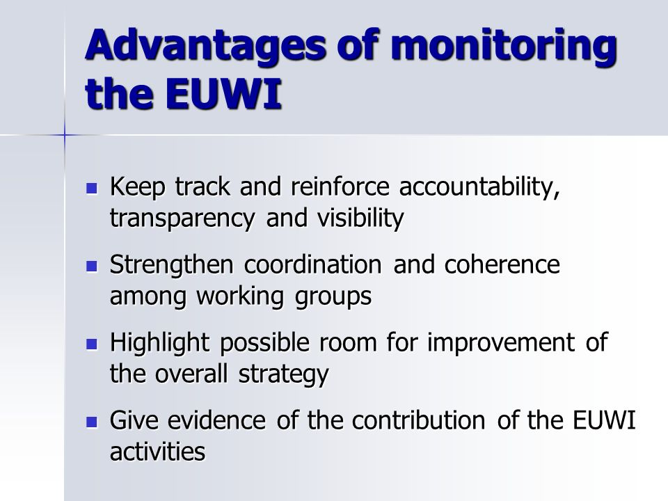 The EUWI M/R system will focus on monitoring progress made in implementing the EUWIs set objectives: The EUWI M/R system will focus on monitoring prog