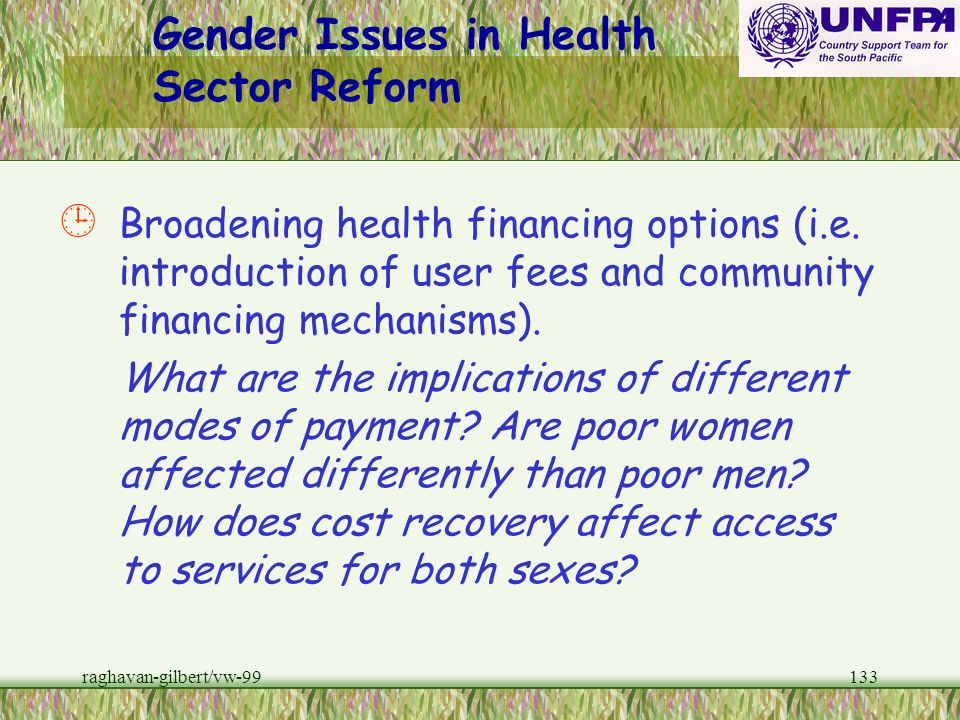 raghavan-gilbert/vw-99132 Gender Issues in Health Sector Reform ¸ Improving the functioning of national ministries of health (i.e. human and financial