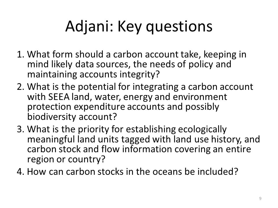 Adjani: Key questions 1. What form should a carbon account take, keeping in mind likely data sources, the needs of policy and maintaining accounts int