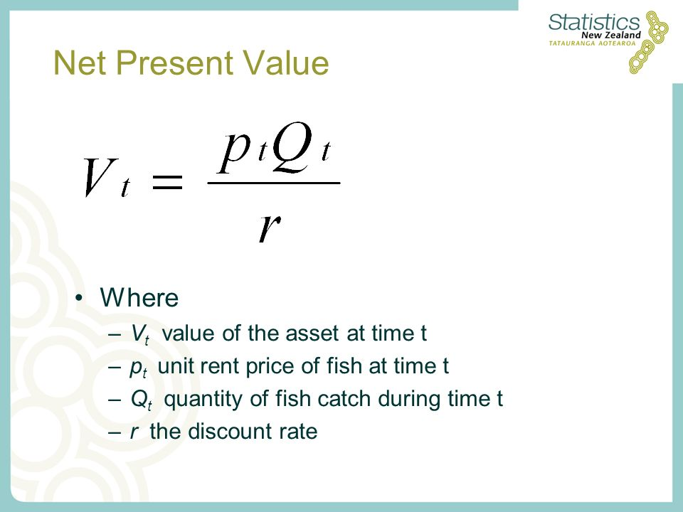 Net Present Value Where –V t value of the asset at time t –p t unit rent price of fish at time t –Q t quantity of fish catch during time t –r the discount rate