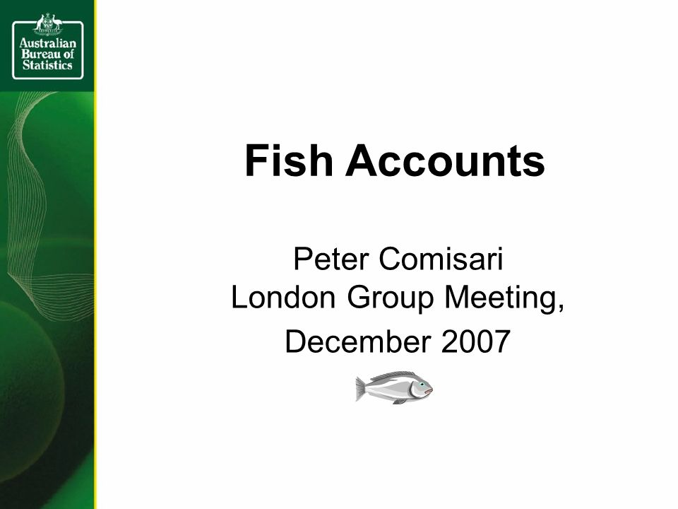 Fish Accounts Peter Comisari London Group Meeting, December 2007
