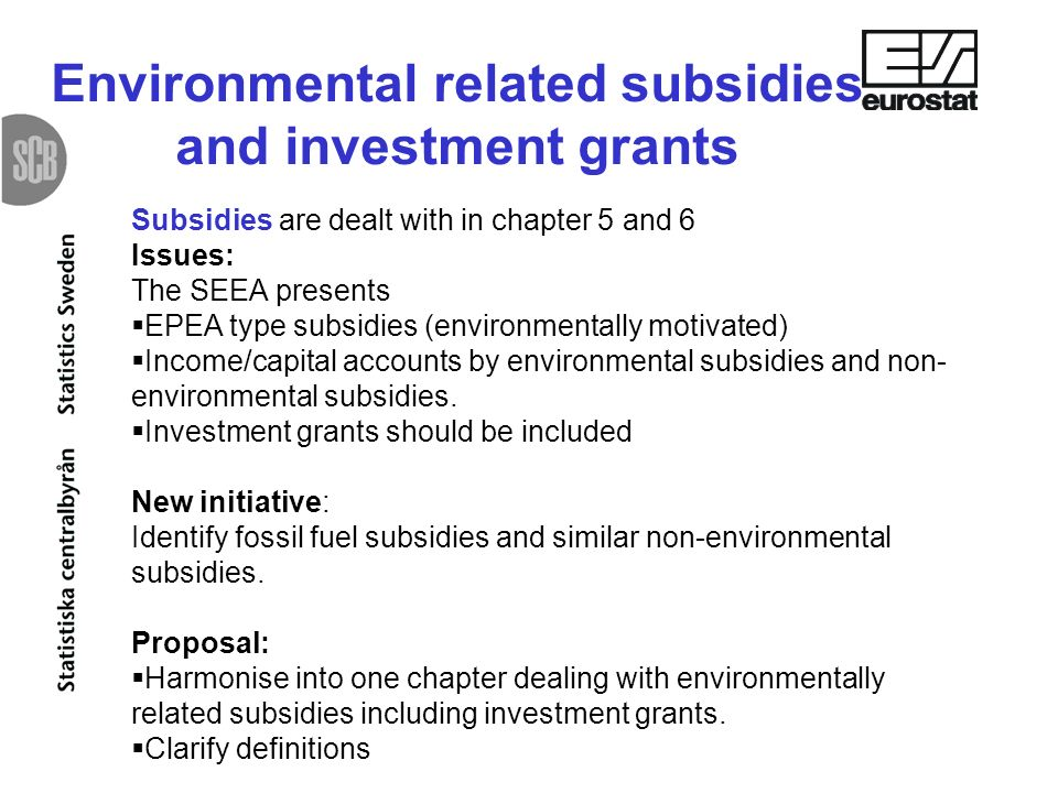 Subsidies are dealt with in chapter 5 and 6 Issues: The SEEA presents EPEA type subsidies (environmentally motivated) Income/capital accounts by environmental subsidies and non- environmental subsidies.