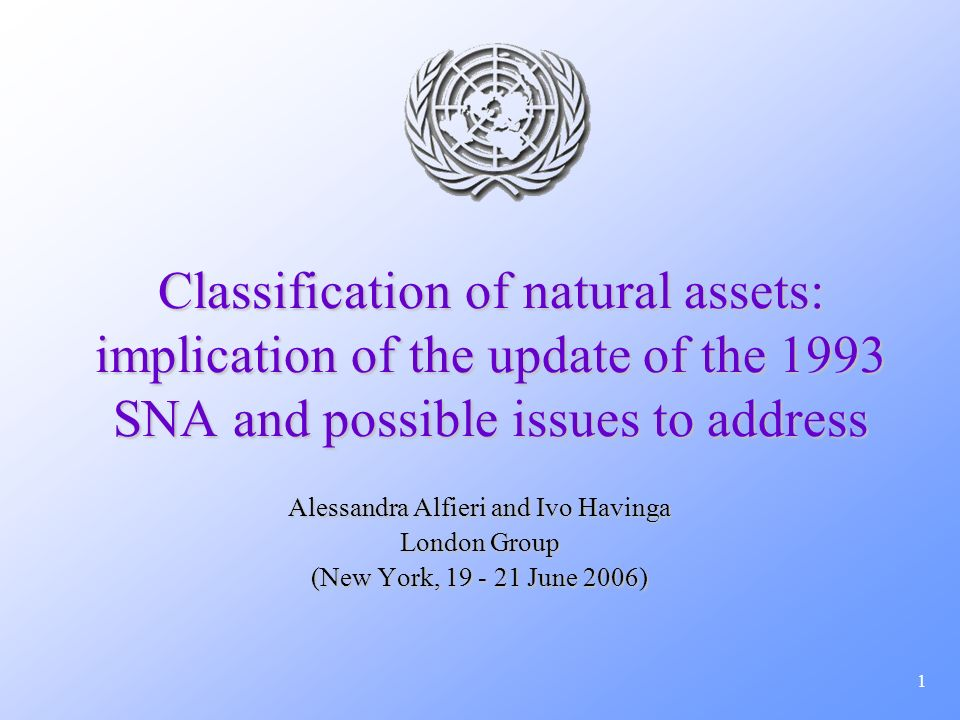 2 Overview BackgroundBackground Definition of assets in 1993 SNA and SEEADefinition of assets in 1993 SNA and SEEA Changes in the 1993 SNA Rev.1 asset classification and impacts in the SEEA-2003Changes in the 1993 SNA Rev.1 asset classification and impacts in the SEEA-2003 Proposal for aligning the classification of natural resources in the 1993 SNA Rev.1 with SEEA- 2003Proposal for aligning the classification of natural resources in the 1993 SNA Rev.1 with SEEA- 2003 Terminology issuesTerminology issues Presentation issuesPresentation issues