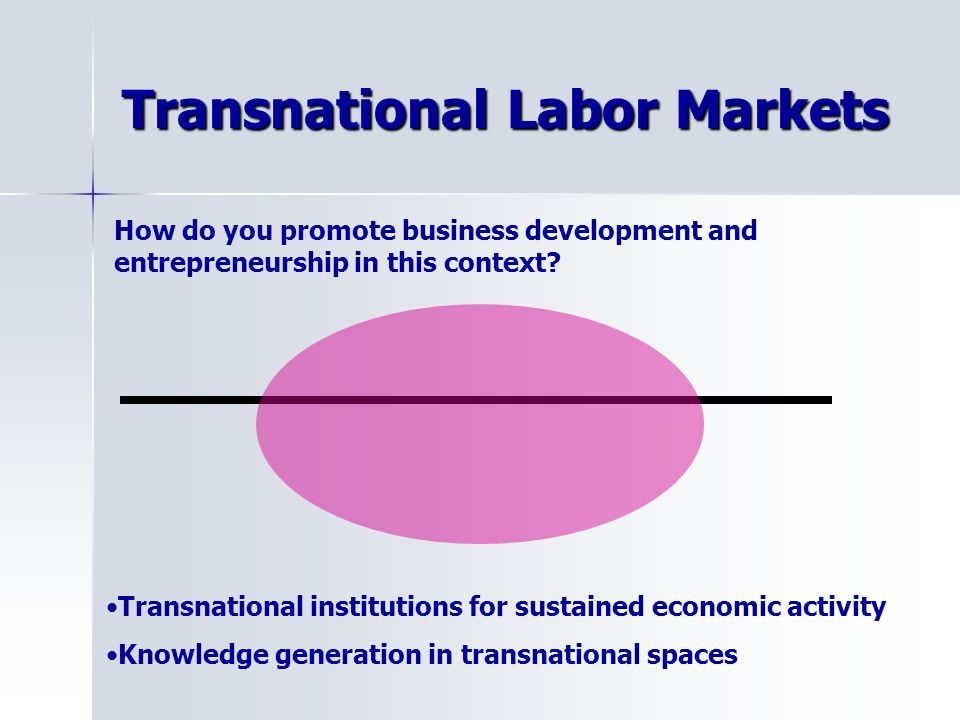 Transnational Labor Markets How do you promote business development and entrepreneurship in this context.