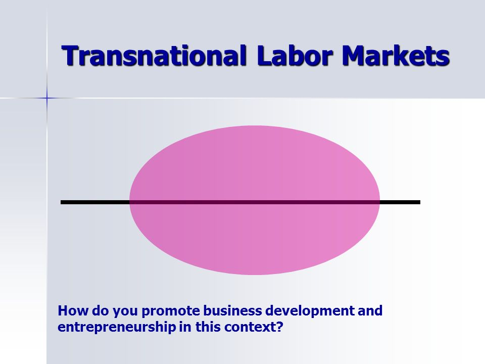 Transnational Labor Markets How do you promote business development and entrepreneurship in this context