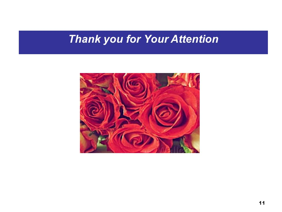11 Thank you for Your Attention