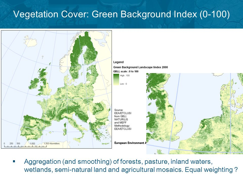 Vegetation Cover: Green Background Index (0-100) Aggregation (and smoothing) of forests, pasture, inland waters, wetlands, semi-natural land and agricultural mosaics.