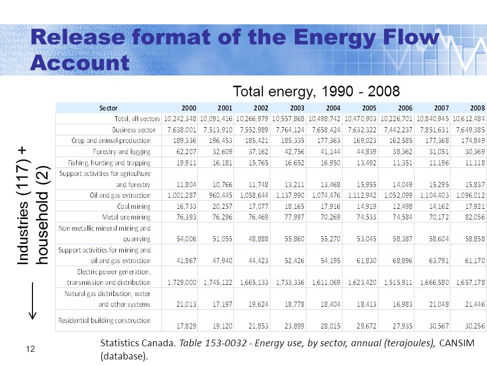 Release format of the Energy Flow Account 12 Statistics Canada.