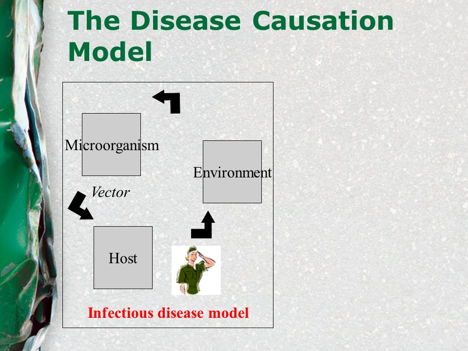 The Disease Causation Model Microorganism Environment Vector Infectious disease model Host