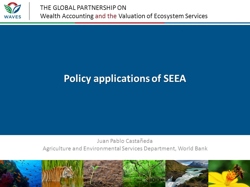 THE GLOBAL PARTNERSHIP ON Wealth Accounting and the Valuation of Ecosystem Services Policy applications of SEEA Juan Pablo Castañeda Agriculture and E