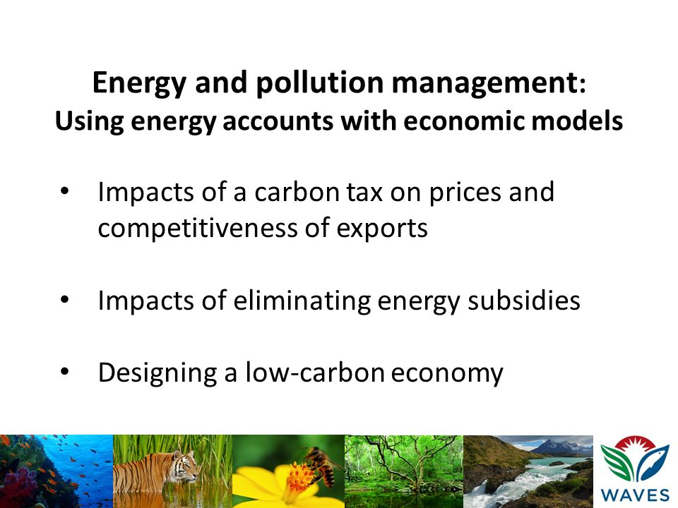 Impacts of a carbon tax on prices and competitiveness of exports Impacts of eliminating energy subsidies Designing a low-carbon economy Energy and pol