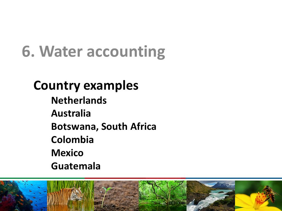Country examples Netherlands Australia Botswana, South Africa Colombia Mexico Guatemala 6. Water accounting