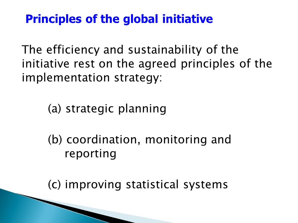 The efficiency and sustainability of the initiative rest on the agreed principles of the implementation strategy: (a) strategic planning (b) coordination, monitoring and reporting (c) improving statistical systems Principles of the global initiative