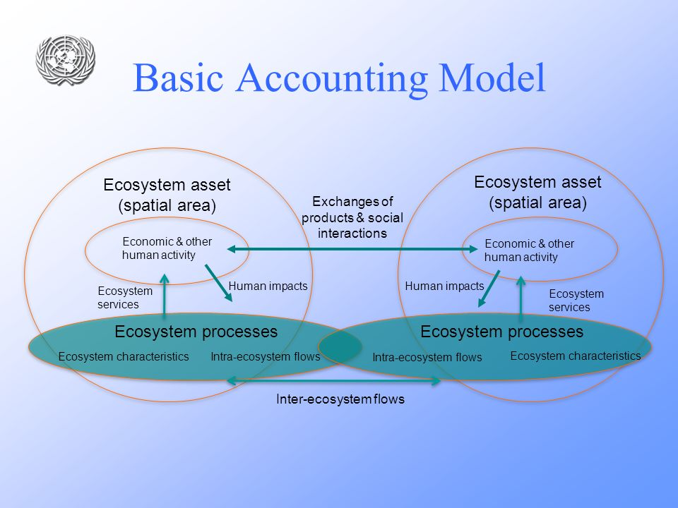 Ecosystem asset (spatial area) Ecosystem processes Economic & other human activity Exchanges of products & social interactions Ecosystem services Inte