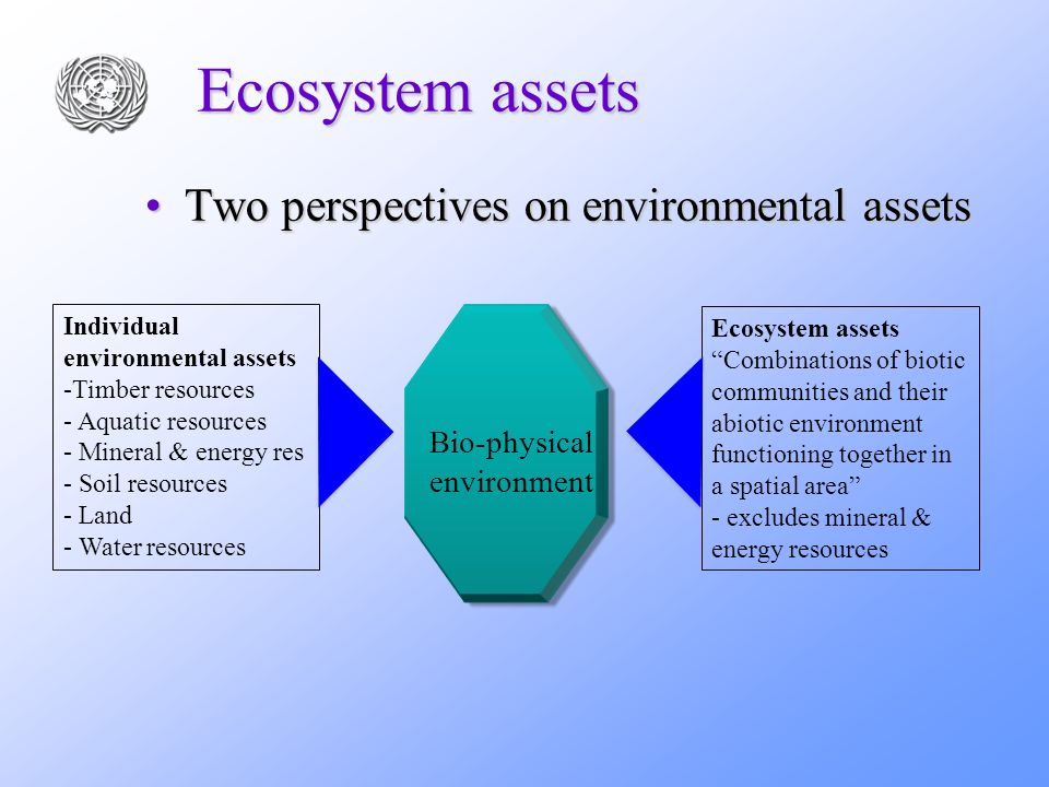 Ecosystem assets Two perspectives on environmental assetsTwo perspectives on environmental assets Individual environmental assets -Timber resources -