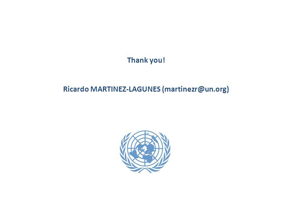 Thank you! Ricardo MARTINEZ-LAGUNES (martinezr@un.org)