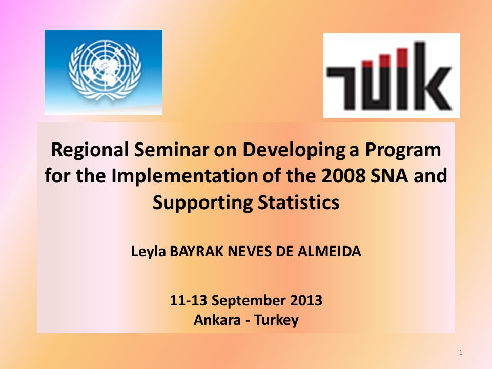 Regional Seminar on Developing a Program for the Implementation of the 2008 SNA and Supporting Statistics Leyla BAYRAK NEVES DE ALMEIDA 11-13 September 2013 Ankara - Turkey 1