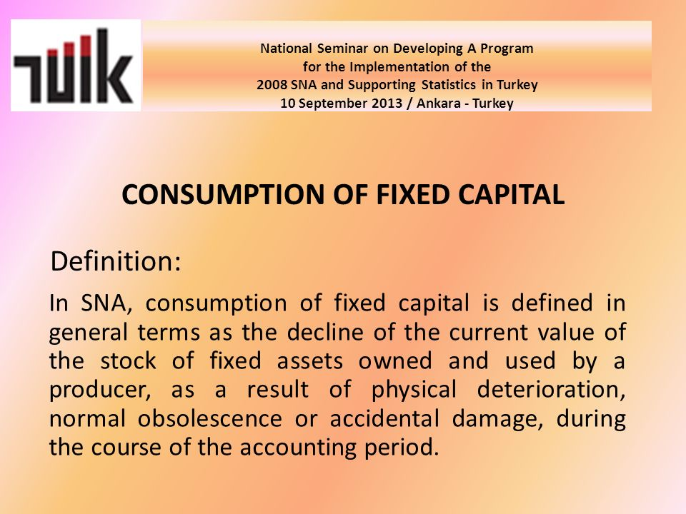 National Seminar on Developing A Program for the Implementation of the 2008 SNA and Supporting Statistics in Turkey 10 September 2013 / Ankara - Turkey Conclusion: Consumption of fixed capital has been estimated by TURKSTAT for the period starting in 1998, but data hasnt been published due to the ongoing revision.