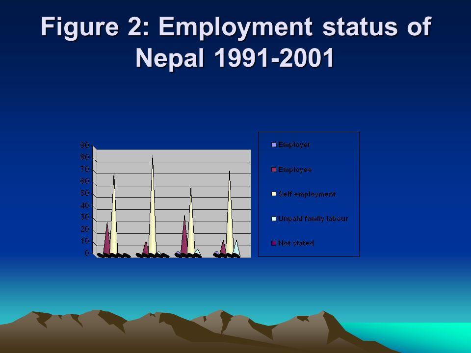Figure 2: Employment status of Nepal 1991-2001