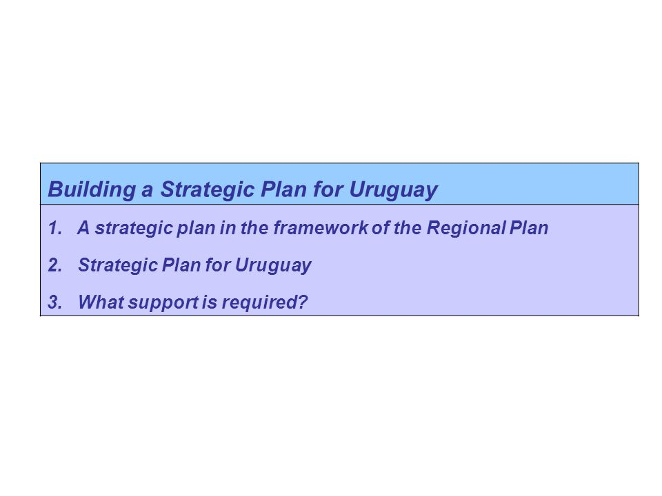 Building a Strategic Plan for Uruguay 1.A strategic plan in the framework of the Regional Plan 2.