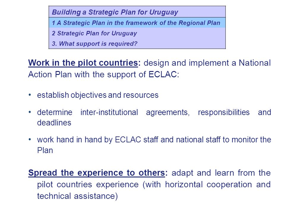 Work in the pilot countries: design and implement a National Action Plan with the support of ECLAC: establish objectives and resources determine inter-institutional agreements, responsibilities and deadlines work hand in hand by ECLAC staff and national staff to monitor the Plan Spread the experience to others: adapt and learn from the pilot countries experience (with horizontal cooperation and technical assistance) Building a Strategic Plan for Uruguay 1 A Strategic Plan in the framework of the Regional Plan 2 Strategic Plan for Uruguay 3.