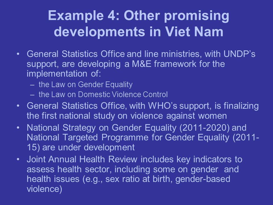 Example 4: Other promising developments in Viet Nam General Statistics Office and line ministries, with UNDPs support, are developing a M&E framework