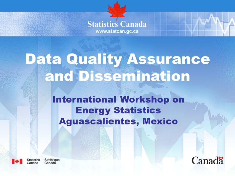Data Quality Assurance and Dissemination International Workshop on Energy Statistics Aguascalientes, Mexico
