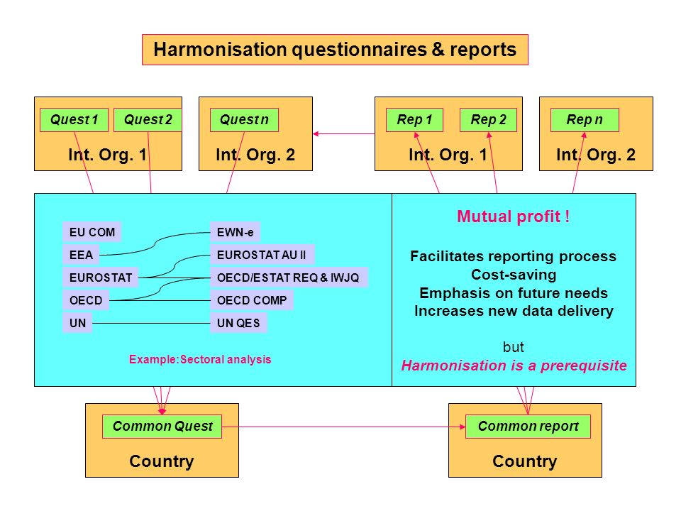 Harmonisation questionnaires & reports Country Common report Int. Org. 2Int. Org. 1 Quest 1Quest 2Quest n Country Common Quest Int. Org. 2Int. Org. 1
