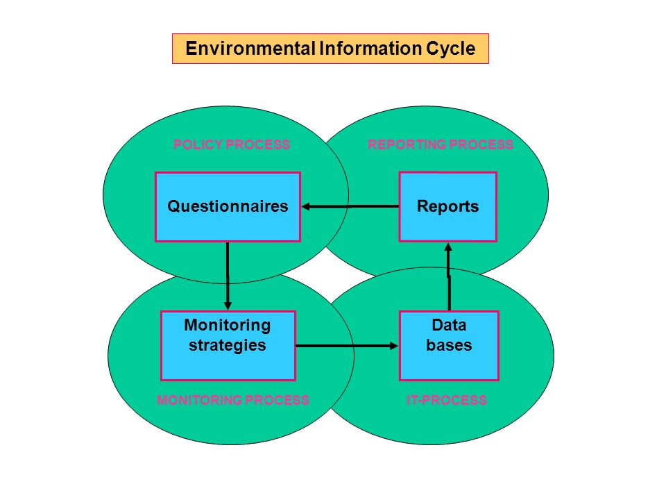 Data bases Questionnaires Reports Monitoring strategies POLICY PROCESS MONITORING PROCESSIT-PROCESS REPORTING PROCESS Environmental Information Cycle