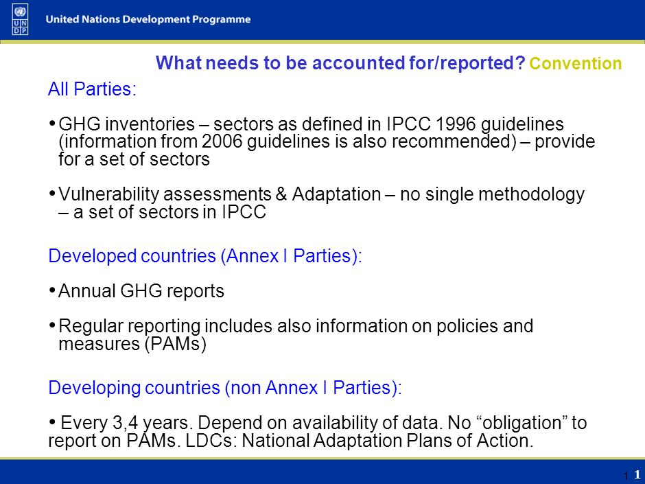 Bali Road Map, Climate Change and Official Statistics Maria Netto United Nations Development Programme 25 June 2008
