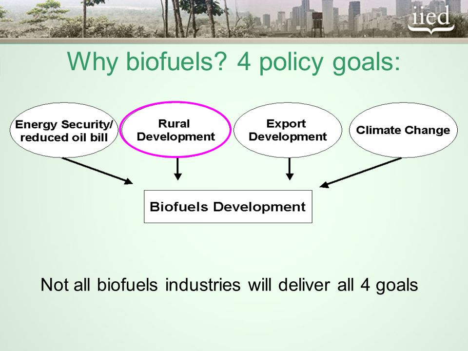 Opportunities: More diverse and secure livelihoods Broader development benefits (including local energy)