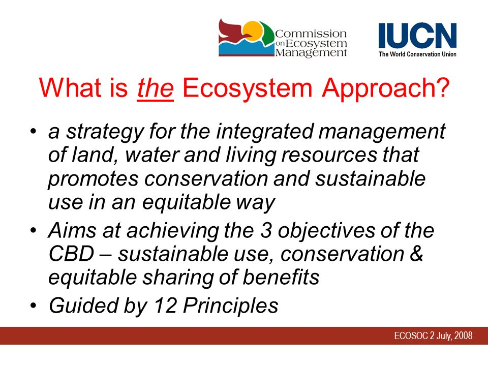 ECOSOC 2 July, 2008 What is the Ecosystem Approach.