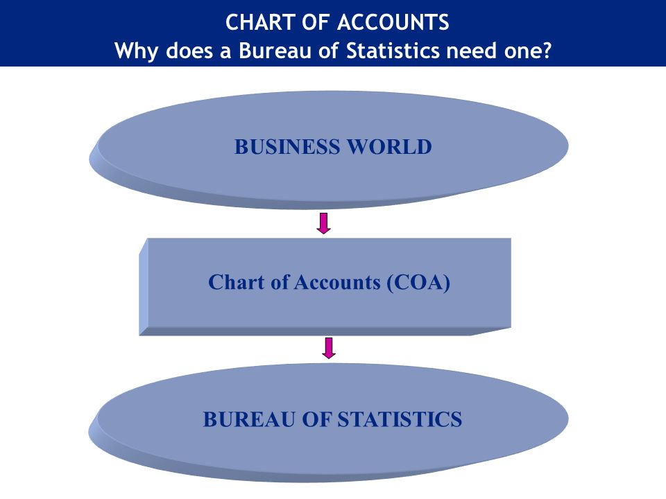 CHART OF ACCOUNTS Why does a Bureau of Statistics need one.