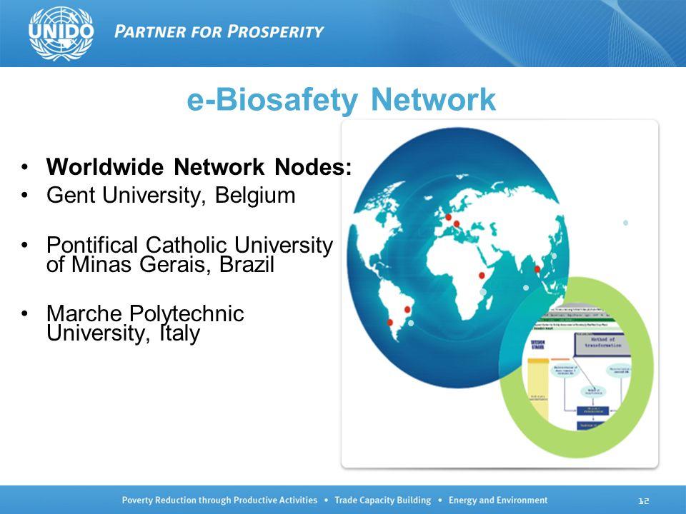 Worldwide Network Nodes: Gent University, Belgium Pontifical Catholic University of Minas Gerais, Brazil Marche Polytechnic University, Italy e-Biosaf